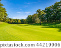 골프 코스 페어웨이 44219906