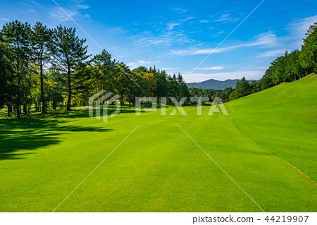 高爾夫球場球道 44219907