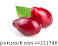 Red berries of cornel or dogwood with leaf isolated on white background 44221746