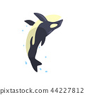 Orca performing in public in dolphinarium or circus vector Illustration on a white background 44227812