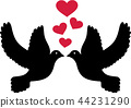 Doves in love 44231290