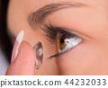 眼睛 目光 鏡頭 44232033