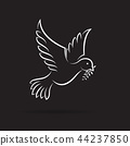 Vector of white dove of peace with olive branch. 44237850