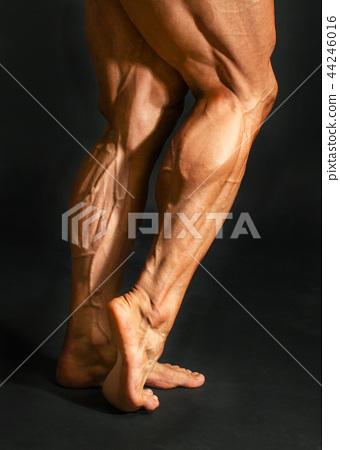 Detail of male bodybuilder back leg calf muscles 44246016