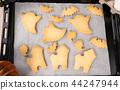 万圣节 糖霜 做饼干 制作 装饰 ハロウィンのクッキー halloween cookies 44247944