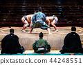 专业相扑摔跤 相扑 相扑赛场 44248551