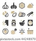 garlic icon 44248970