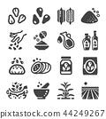 sesame icon 44249267