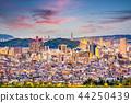 Shizuoka City, Japan Skyline 44250439