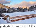 Winter landscape 44251317