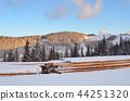 Winter landscape 44251320