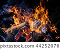 Burning wooden logs in fire, campfire on black 44252076