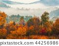 Foggy autumn landscape 44256986