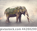 Double exposure of elephant and palm trees 44260200