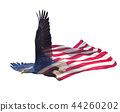 Double exposure  of  bald eagle on american flag. 44260202