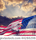 The United States Capitol,  Flag and  Eagle  44260206