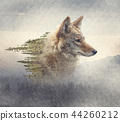 Double exposure of coyote portrait and pine forest 44260212
