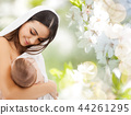 mother breast feeding baby over cherry blossoms 44261295