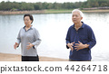 Asian Senior couple Practice Qi Gong exercise 44264718