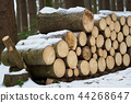 Spruce wood in the background. Firewood stack. 44268647
