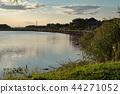 沼泽的风景与码头的 44271052