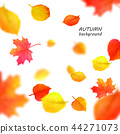 Banner for autumn sale in frame from leaves. Vector illustration EPS10 44271073