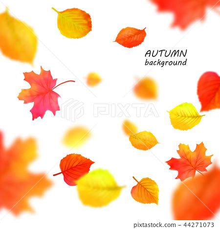 Banner for autumn sale in frame from leaves. Vector illustration EPS10 44271073