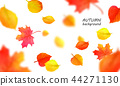 Banner for autumn sale in frame from leaves. Vector illustration EPS10 44271130