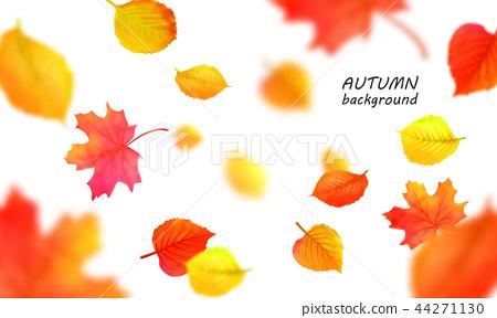 Banner for autumn sale in frame from leaves. Vector illustration EPS10 44271130