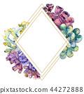 Colorful aquatic underwater nature coral reef. Frame border ornament square. 44272888