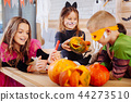 Cute smiling girl wearing cat costume holding little carved Halloween pumpkin 44273510