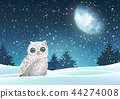 Winter background, owl sitting in snow under moon 44274008