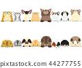 矢量 毛孩 貓 44277755