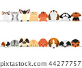 개와 고양이들의 국경 세트 올려다 내려다 44277757