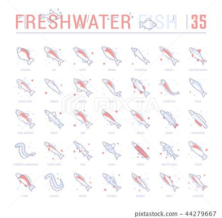 Set Blue Line Icons of Freshwater Fish 44279667