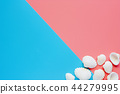 White sea shells on pink and blue background 44279995