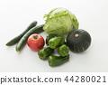 야채, 채소, 식자재 44280021