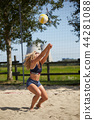 BEACH VOLLEY 44281088