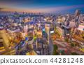 Shibuya, Tokyo, Japan Skyline 44281248