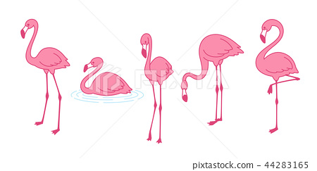 Cartoon pink flamingo vector set icon Cute bird 44283165