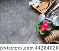Seedlings of  flowers and various garden tools  44284028