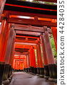Fall Fushimi Inari Inariyama Senbon Torii เมืองเกียวโตประเทศญี่ปุ่น 44284035