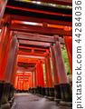 秋天伏见Inari Inariyama Senbon Torii,京都,日本 44284036