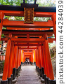 Fall Fushimi Inari Inariyama Senbon Torii เมืองเกียวโตประเทศญี่ปุ่น 44284039