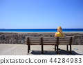 t-shirt, seafront, woman 44284983