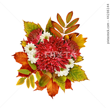 Autumn bouquet with chrysanthemum flowers  44286144
