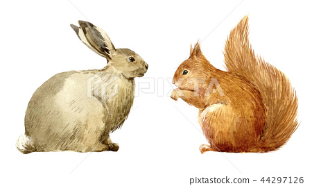 Watercolor rabbit and squirrel set 44297126