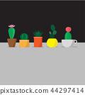 five vector cactus in the pots 44297414