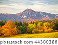 fall, autumn, hill 44300386