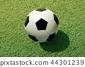 Soccer Football on grass 44301239